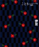 Cotrip14_izu_2