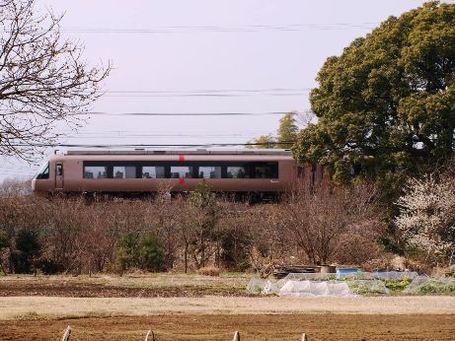 P2152613