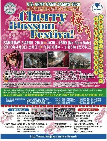 2010_web
