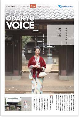 201201voice