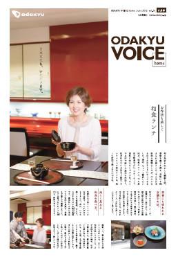 201206voice