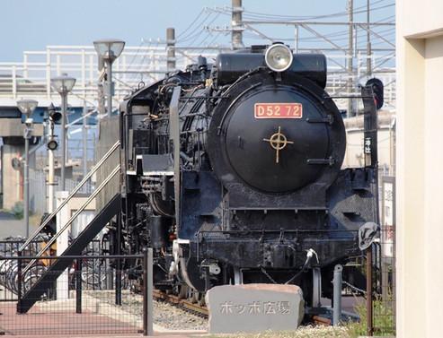 P5265991