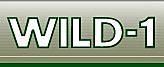 Wild1head_01