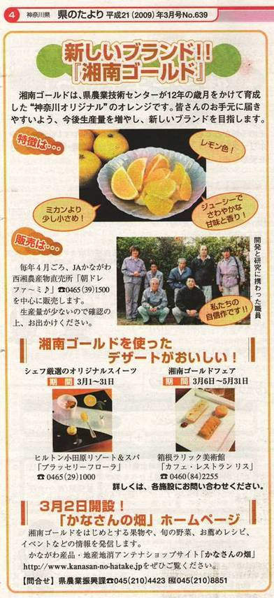 Scan10033