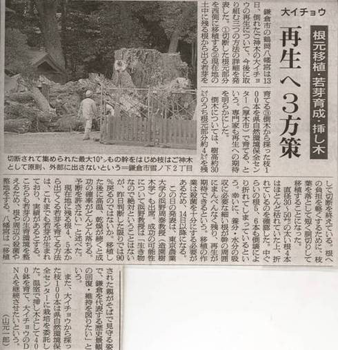 Scan10139