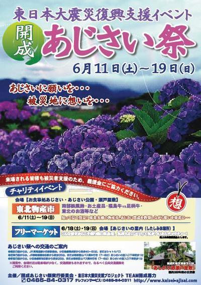 201106kaisei