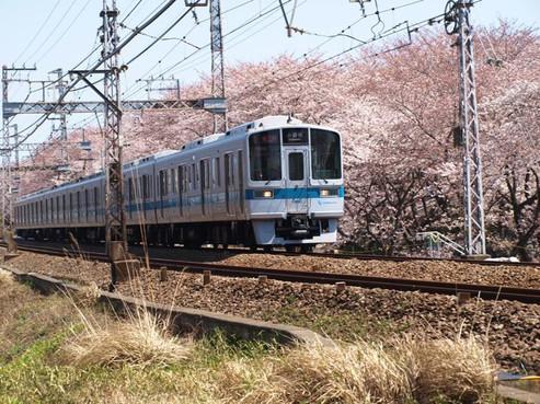 P4089594