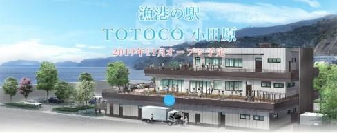 201904totoco